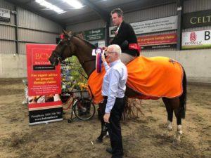 Wexford Equestrian Grand Prix